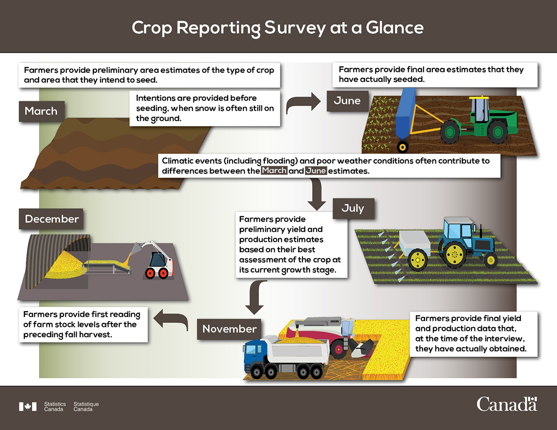 Crop Report Survey at a Glance