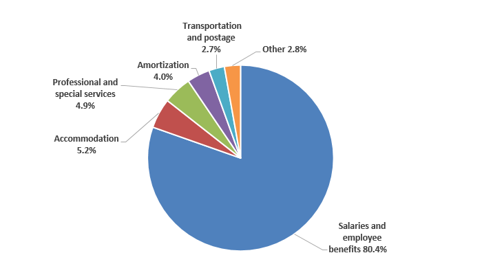 Pie chart: Gross expenditures by type - Described in following paragraph