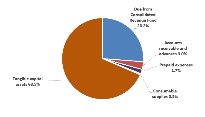 Pie chart: Assets by type - Described in following paragraph