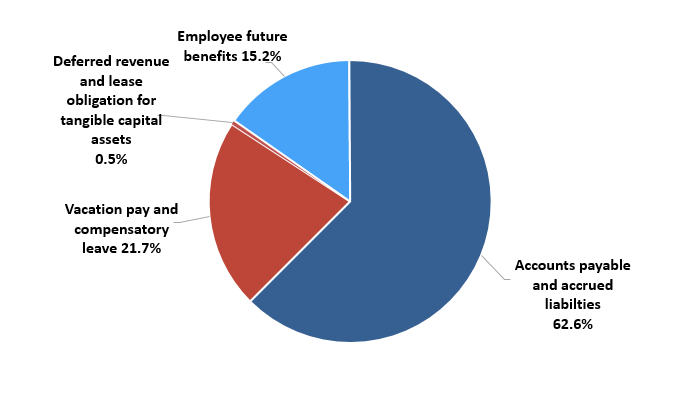 Pie chart: Liabilities by type - Described in following paragraph