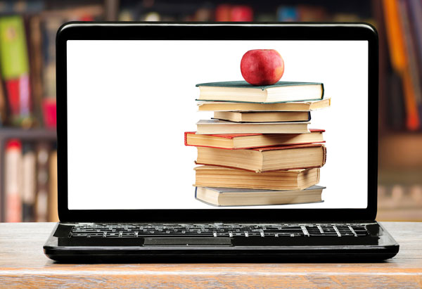 Enquête sur l'enseignement primaire et secondaire pour le Canada, les provinces et les territoires, 2017-2018