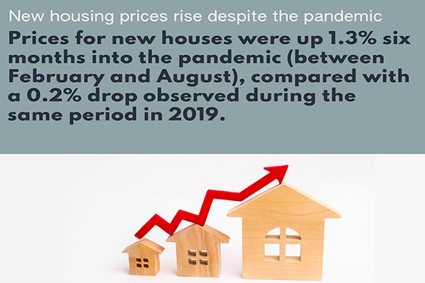 The resilience and strength of the new housing market during the pandemic