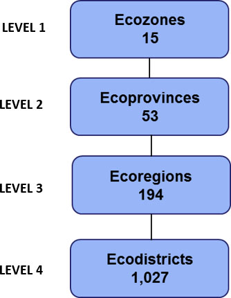 Figure 1 Ecological Land Classification hierarchy