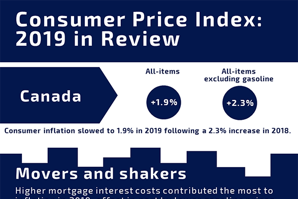 Consumer Price Index: 2019 in Review
