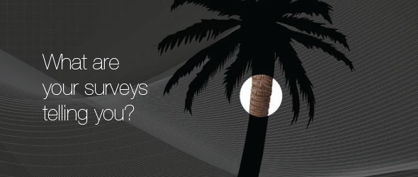 A black and grey silhouette of a palm tree with a circular area highlighted in full colour is accompanied by the words, What are your surveys telling you?
