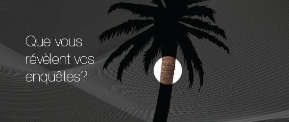 Silhouette en noir et gris d'un palmier. Une zone circulaire en couleur accentue une partie du tronc. L'image est accompagnée du texte « Que vous révèlent vos enquêtes? »