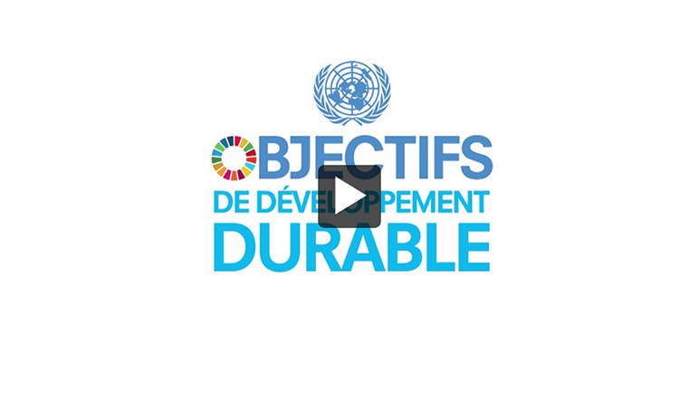Thumbnail - Vidéo: Réunion du Groupe d'experts des Nations Unies et de l'extérieur chargé des indicateurs relatifs aux objectifs de développement durable