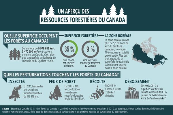 Infographie 1 - Un aperçu des ressources forestières du Canada