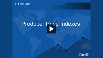 Statistics Canada Training Institute - Producer price indexes
