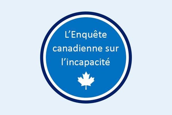 Mesures d'adaptation en milieu de travail pour les employés ayant une incapacité au Canada, 2017