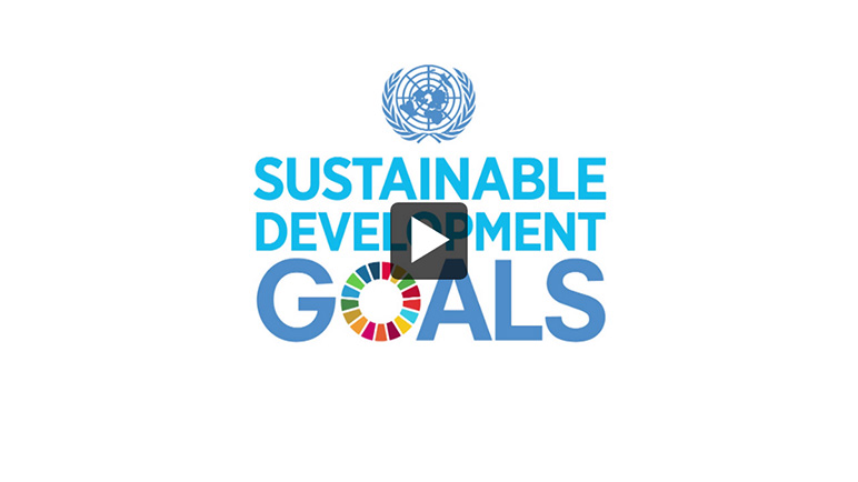 Thumbnail - Video: Meeting of the UN Inter-agency and Expert Group on Sustainable Development Goal Indicators